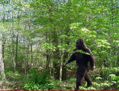 BIGFOOT-630x481